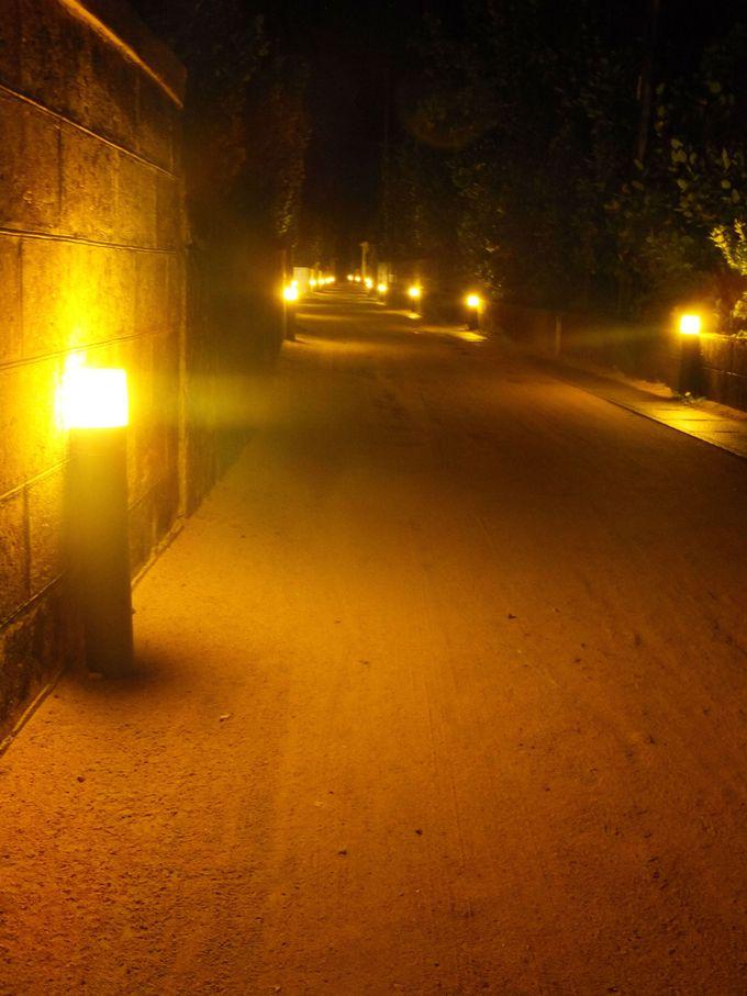 夜のフットライト通りに朝起き会!宿泊すれば全てを見れる
