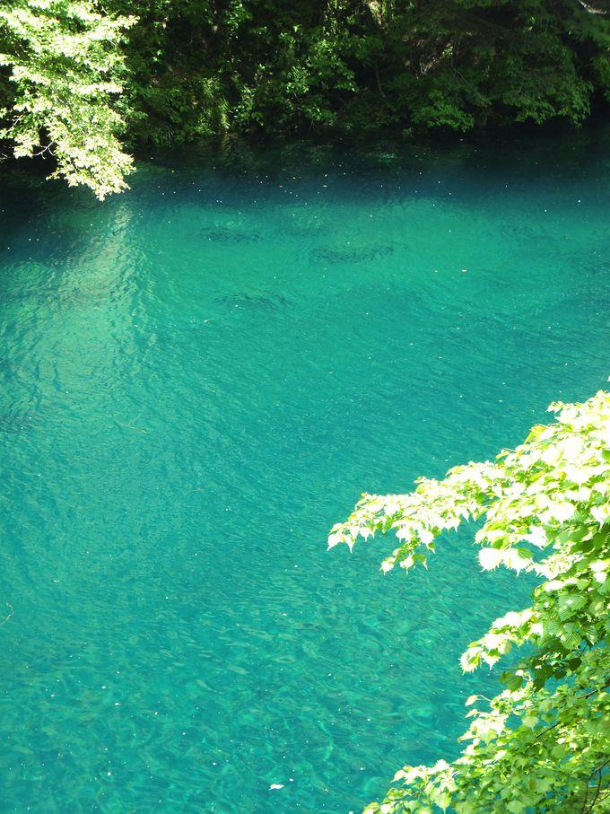 ユーシンブルーの水を湛える「玄倉ダム」の調整池