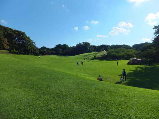 かつての馬場は広大な芝生が広がる「根岸森林公園」に