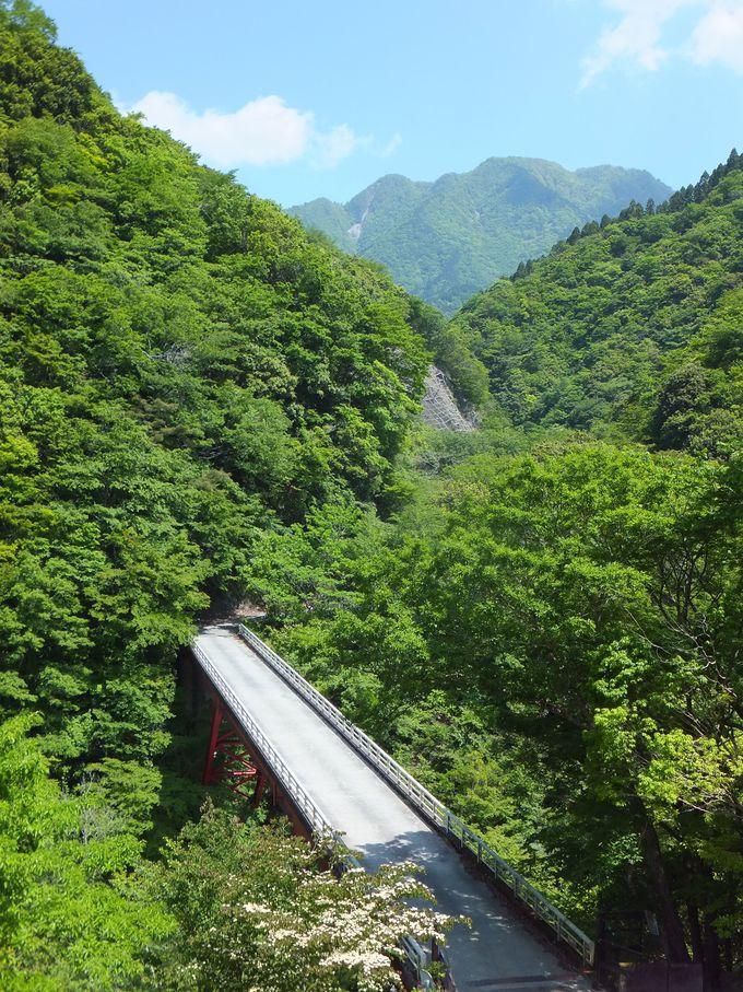 ユーシン渓谷ハイキングコースを進む!