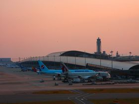 夕日と飛行機のコラボ!関西国際空港おススメグルメ・絶景スポット|大阪府|トラベルjp<たびねす>