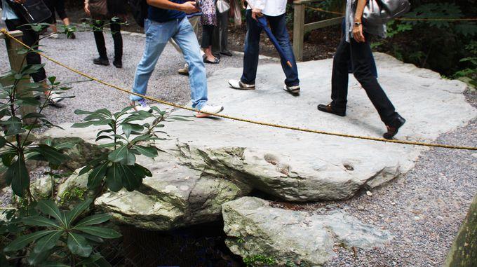 亀の形をした石
