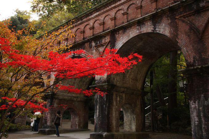 レトロな水路閣にある真っ赤なカエデ