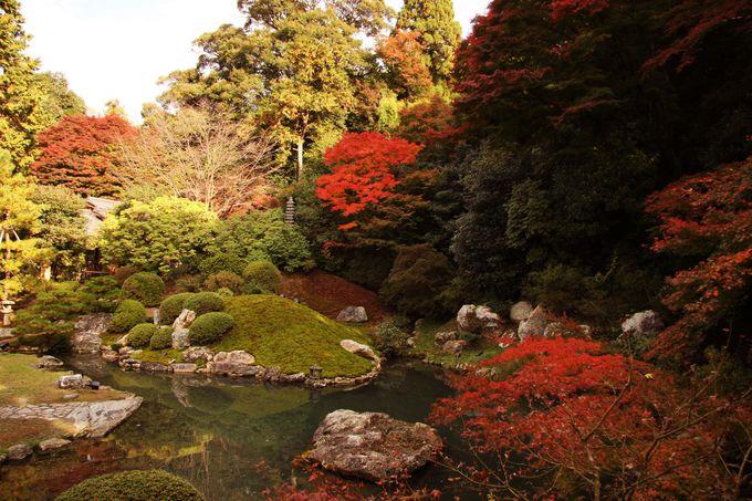 四季折々に色を変える庭園