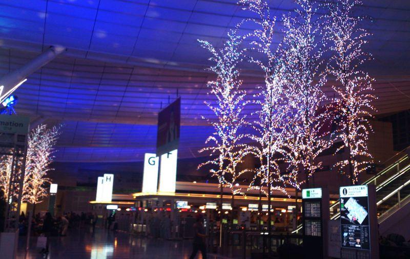 羽田空港国際線に光の魔術師が作るイルミネーションが!?待ち時間も退屈しない超お勧めスポット!