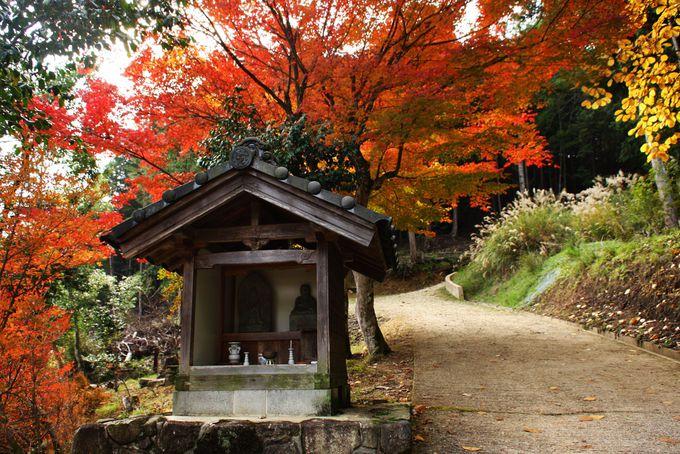 山里の紅葉もしっとりとして情緒あり