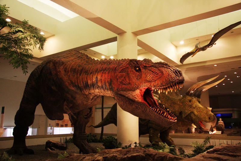 実物大の動く恐竜がリアルすぎ!愛媛県総合科学博物館は1日遊べるパラダイス!