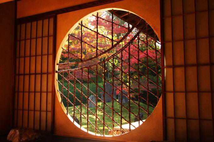 東福寺の穴場 茶亭の窓越しに眺める美しい紅葉「光明院」