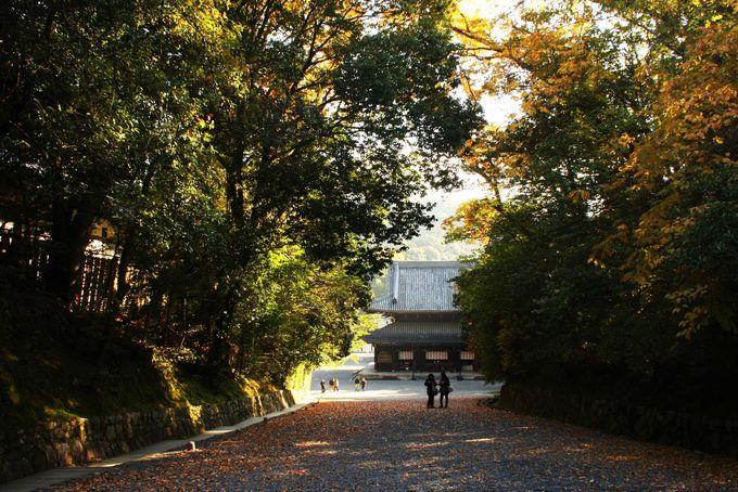 泉涌寺では紅葉を見ながら美人祈願を