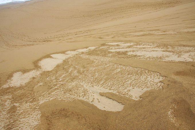 天気によって変わる砂の形