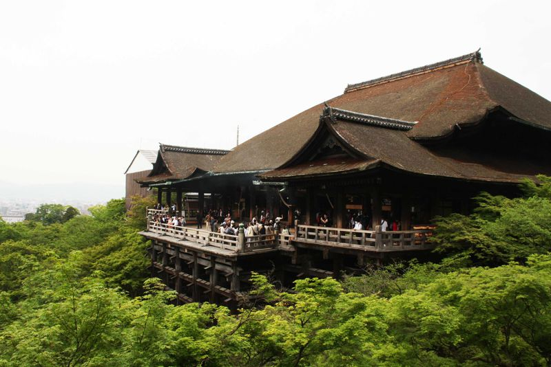 京都観光初心者必見!半日で手軽に三大名所をめぐるハートツアーが今熱い!