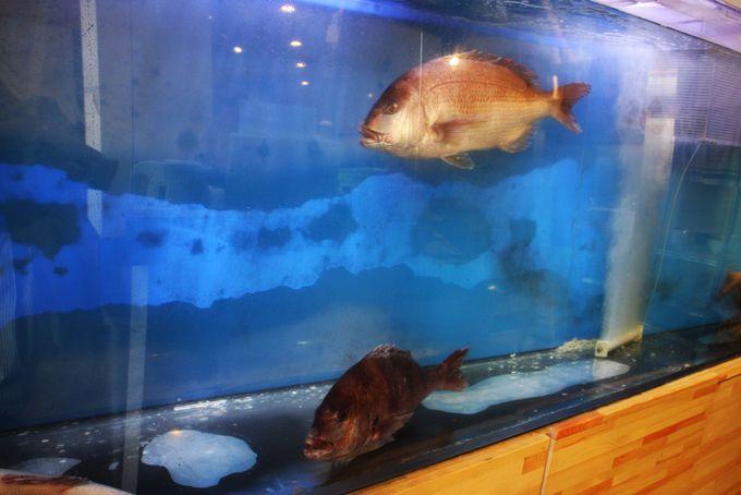 鯛が泳ぐ店内