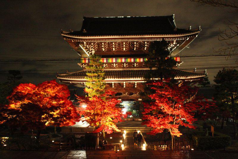 京都「金戒光明寺」の紅葉ライトアップは池に映る紅葉が美しい!