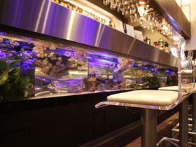 お台場のおすすめホテル5選 臨海で夜景やレジャーを楽しもう!