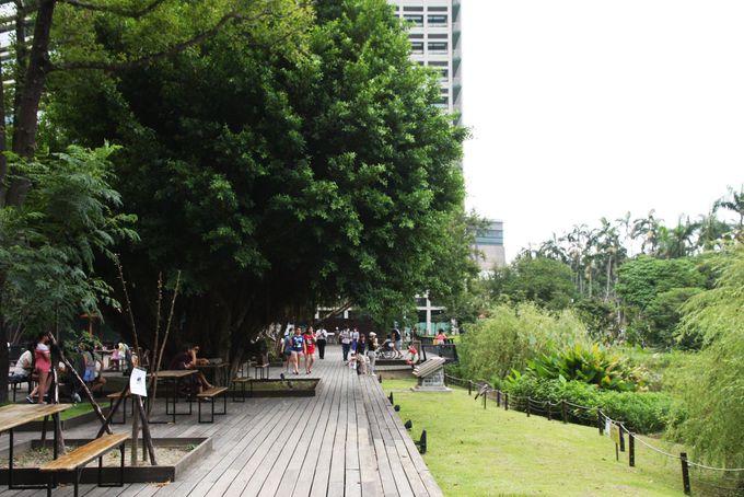 台北市民の憩いの場「生態池(ビオトープ)」