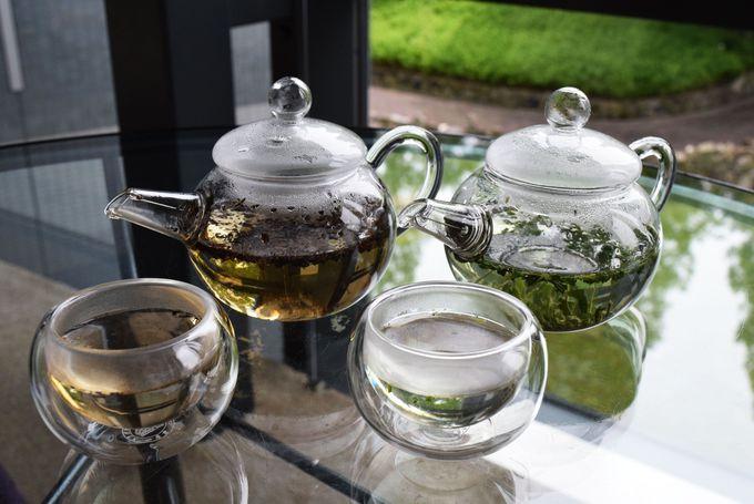 7種の宇治茶を飲み比べ