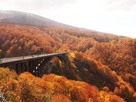 360度の紅葉パノラマ!青森・城ヶ倉大橋は八甲田連峰が一望できる展望スポット!|青森県|トラベルjp<たびねす>