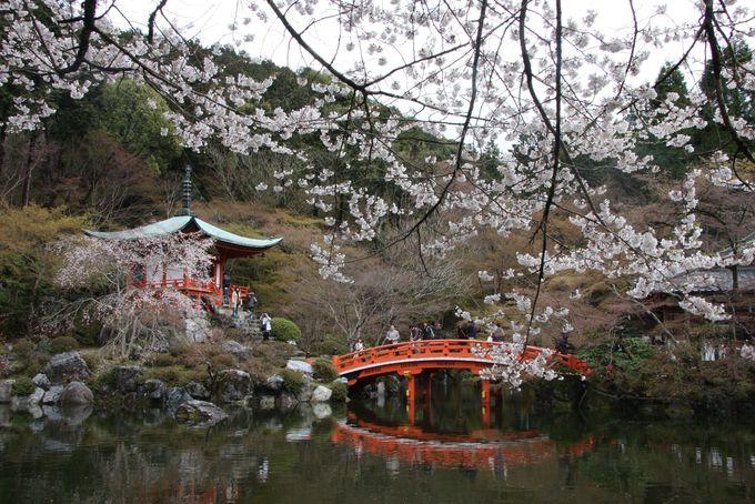醍醐寺の弁天堂は池にうつる桜が美しい