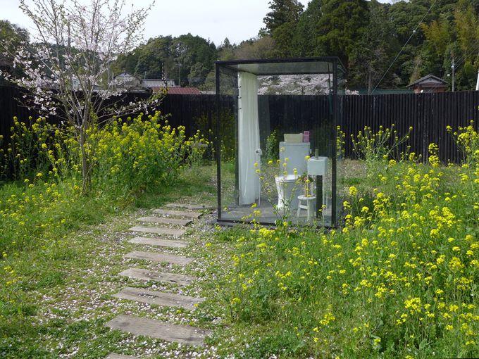 飯給駅(いたぶえき)の女子トイレはお花畑?