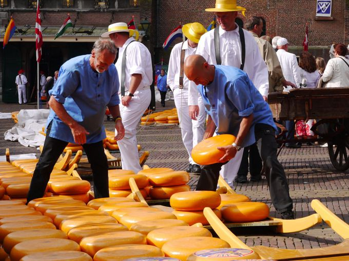 チーズ市場で有名な「アルクマール」