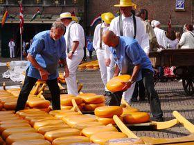 余興も楽しいチーズ市場へ!チーズ王国オランダ「アルクマール」