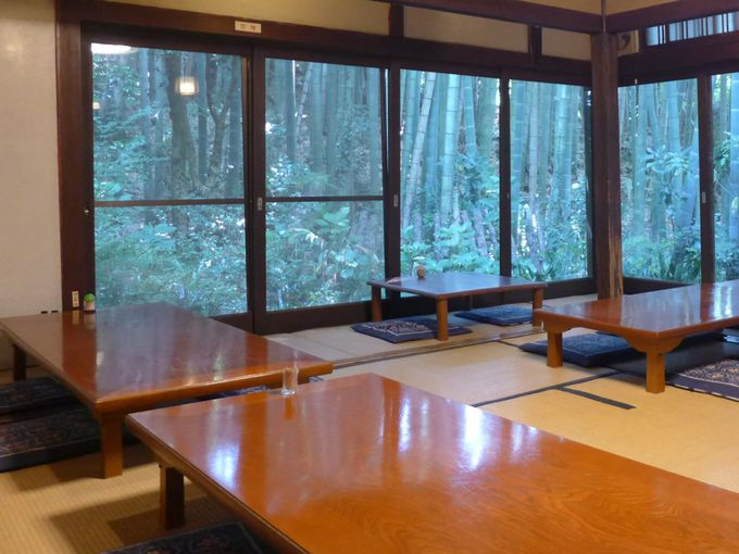 窓のむこうは竹林