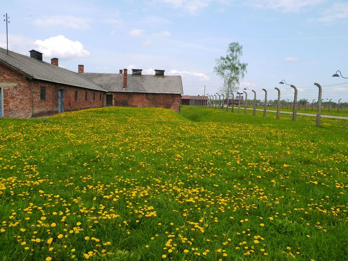 大量虐殺が行われた強制収容所