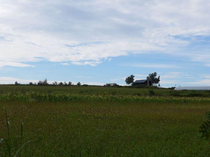 お花畑と丘のまち、北海道美瑛町