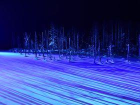 冬の美瑛・幻想的な青い池のライトアップを見るならホテル・ラブニールに泊まろう