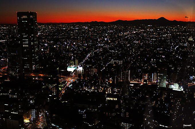 絶景が一望できる東京都庁