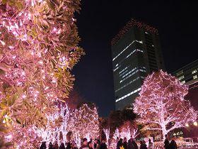 新宿半日観光!新宿御苑から東京都庁まで南口から西口をぶらり旅|東京都|トラベルjp<たびねす>