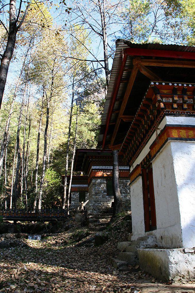 タクツァン僧院への参拝は森の中からスタート