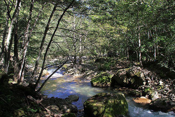 鬼怒川温泉駅から山奥の加仁湯まで