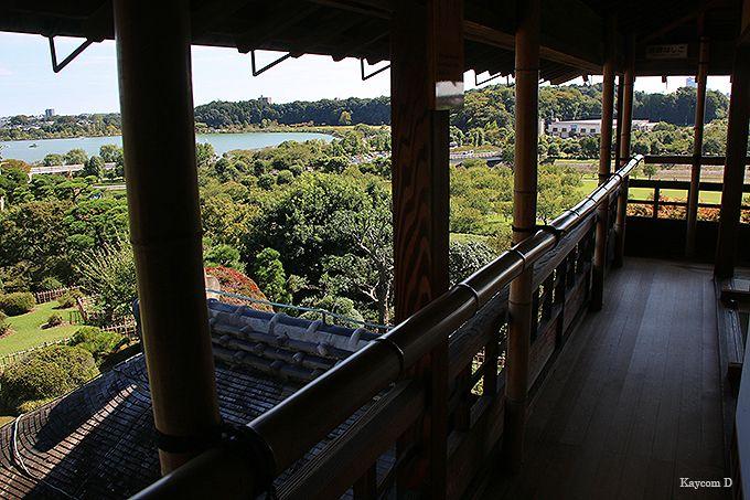 1.偕楽園(水戸市)