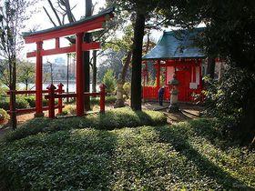 広重の浮世絵に描かれた景勝地!東京 洗足池公園で歴代の偉人の史跡と伝説を巡る