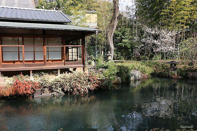 純和風の茶室と和室