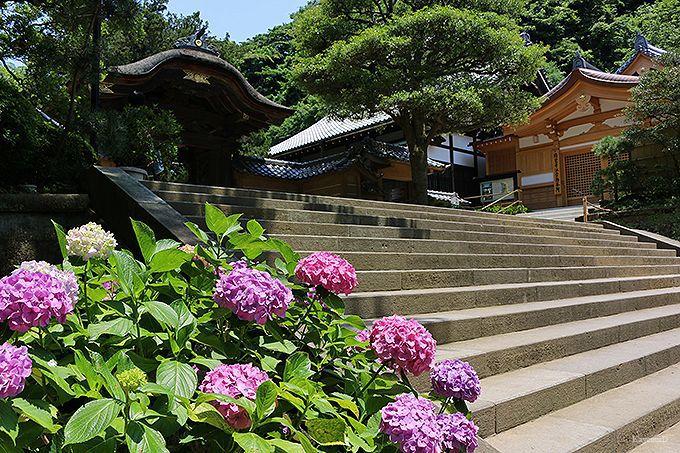 北鎌倉駅〜円覚寺〜浄智寺