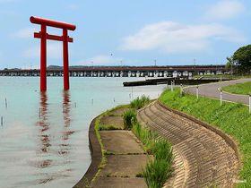 「鹿嶋神の道」を歩く!茨城のパワースポット鹿島神宮から巡る巡礼旅|茨城県|トラベルjp<たびねす>