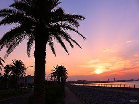 夕日の名所!横須賀の観音崎から馬堀海岸まで「うみかぜの路」を潮風散歩|神奈川県|トラベルjp<たびねす>
