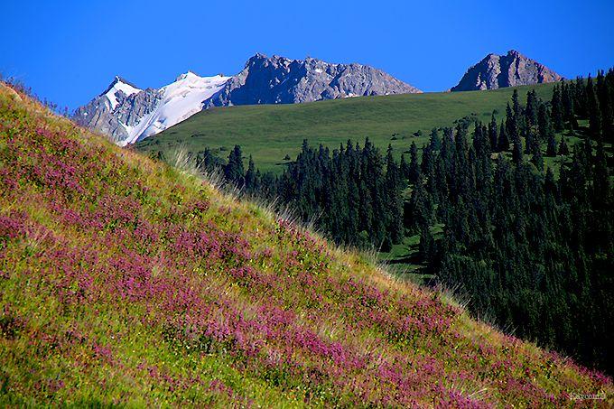 大自然が広がる「カラコル渓谷」