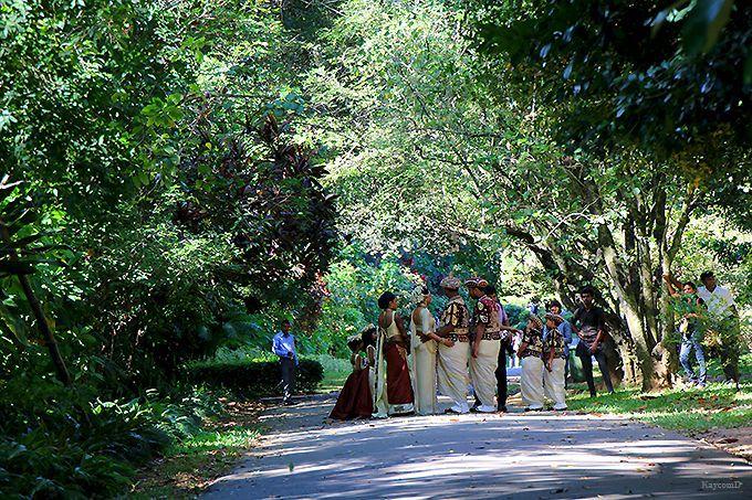世界の著名人も訪れる「ペラデニヤ植物園」