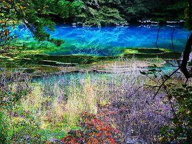 五色沼の絶景スポットはここ!福島県の裏磐梯「五色沼湖沼群」の散策ポイント|福島県|トラベルjp<たびねす>