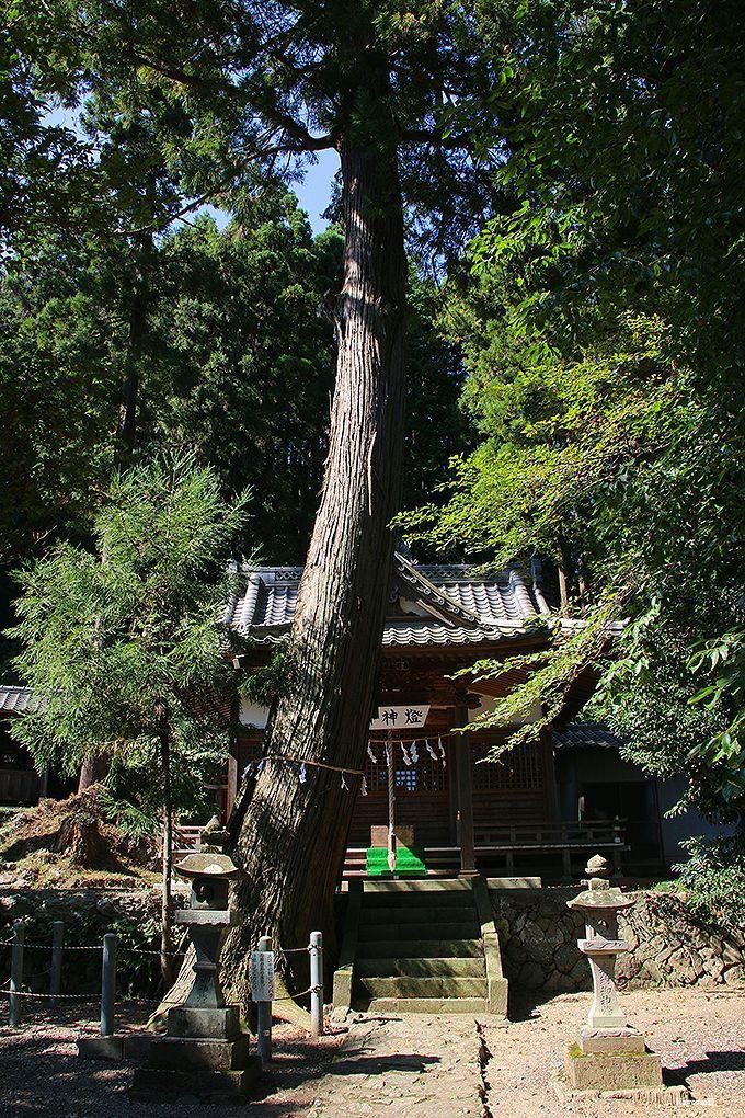 吉田家住宅〜三光神社