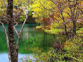 総合マウンテンリゾート!山形県「蔵王温泉」で湯巡りと蔵王連山の大自然を満喫|山形県|トラベルjp<たびねす>