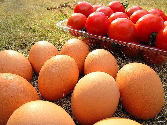 新鮮農作物が並ぶ直売所