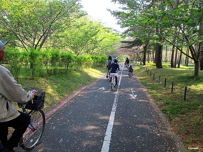 サイクリングで園内を周遊