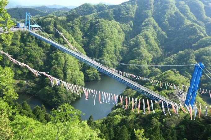 茨城「竜神大吊橋」の長さは歩行者用吊橋本州一!