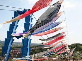 関東有数1,000匹の鯉のぼりが泳ぐ祭り!茨城「竜神大吊橋」は東京からも日帰り楽々|茨城県|トラベルjp<たびねす>