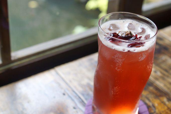 「無為草堂」で台湾茶を味わうスローな時間
