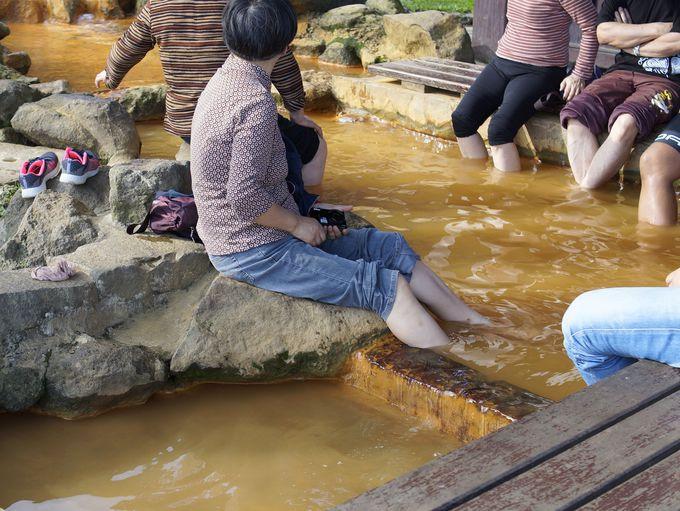 温泉もある陽明山の主要ビジターセンター「冷水坑」